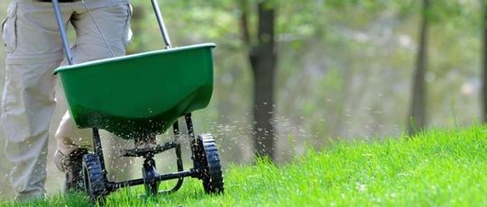Garden Clean Up Services