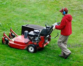Lawn Fertilisation Services